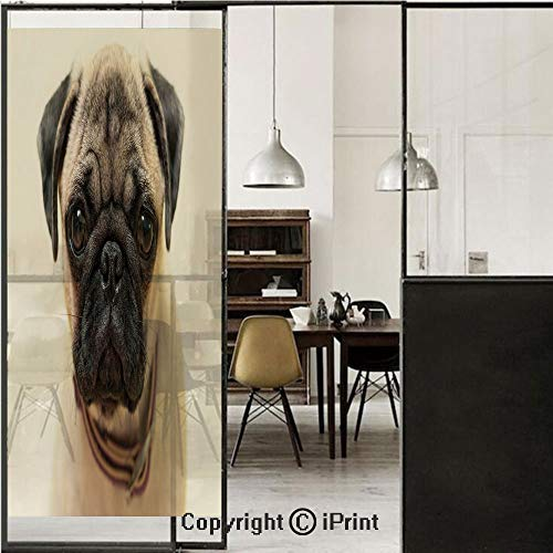Price comparison product image Pug 3D Decorative Film Privacy Window Film No Glue, Frosted Film Decorative, Photograph of a Pug Pure Bred Puppy with a Loose Collar Cute Dog Pets Animal Decorative, for Home&Office, 17.7x70.8Inch Pale Br