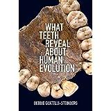 Why We Talk: The Evolutionary Origins of Language (Studies in the Evolution of Language)