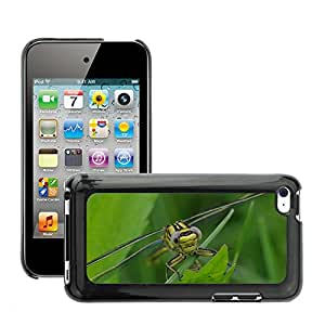Etui Housse Coque de Protection Cover Rigide pour // M00112758 Insecto Libélula Animal // Apple ipod Touch 4 4G 4th