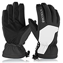 Ski Gloves, HiCool Waterproof Thermal Winter Ski Gloves Snowboard Snowmobile Motorcycle Cycling Outdoor Sports Gloves