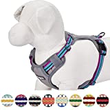 Blueberry Pet 9 Colors Soft & Comfy 3M Reflective Multi-colored Stripe Padded Dog Harness Vest, Chest Girth 22''-26.5'', Neck 17.5''-26'', Violet & Celeste, Medium, Mesh Harnesses for Dogs