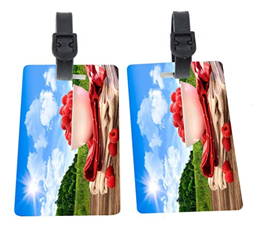 Rikki Knight Summer raspberry picnic Design Premium Quality Plastic Flexi Luggage Tags with Strap Closure - Great for Travel (set of 8)