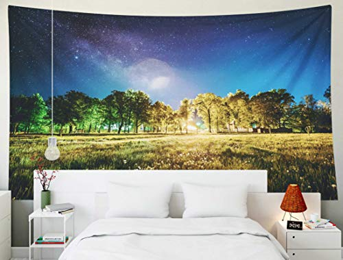 Fullentiart Dorm Tapestry, Wall Hanging 80x60inchGreen Trees Woods