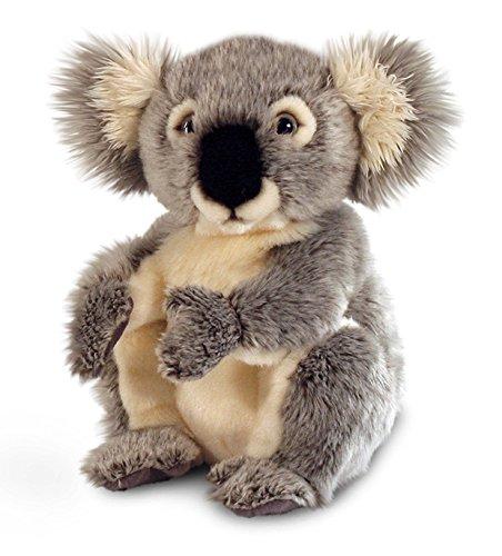 Keel Toys 28cm Sitting Wildlife Grey Koala Teddy Bear Soft Plush Cuddly Toy by (Keel Toys Teddy Bear)