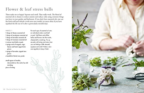 The Art of Herbs for Health: Treatments, tonics and natural home remedies (Art of series) by Kyle Books (Image #6)