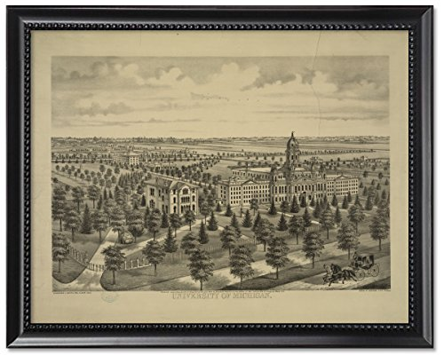 ブラックウッドフレーム入り印刷8 x 10 :大学のミシガン州、1874   B07684C1Q1