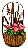 Deer Park WB142 Dragonfly Wall Planter with Cocoa Moss Liner