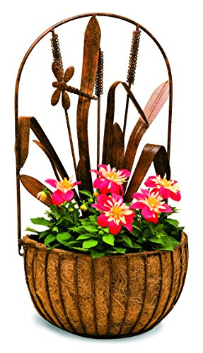 Deer Park WB142 Dragonfly Wall Planter with Cocoa Moss Liner by Deer Park