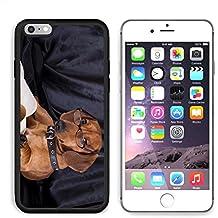 MSD Premium Apple iPhone 6/6S Plus Aluminum Backplate Bumper Snap Case iPhone6 Plus IMAGE ID: 10142599 puppy purebred dachshund
