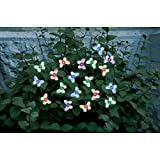 Smart Solar Butterfly Solar Light String - 20 Color Changing LED Butterflies by Smart Solar
