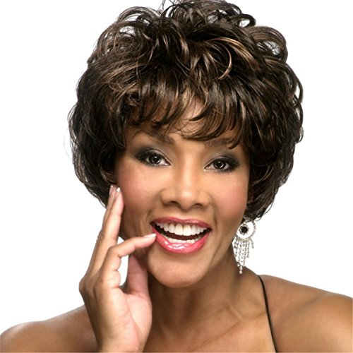 [YX Brown Natural Hair Wig afro Women Synthetic Wigs Short Wigs for Black Women as Real Hair Wigs 32CM(Dark Brown] (50s Wig)