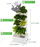 BlueSkyGrow Self Watering Planter - Vertical