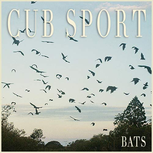Cubs Rock - Bats