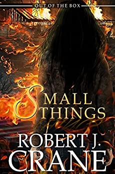 Small Things Out Box Book ebook