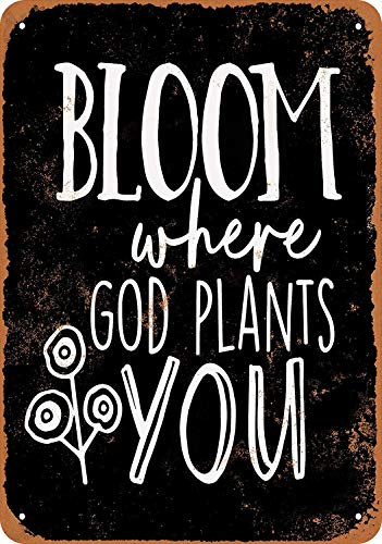 SRongmao 12 x 16 Metal Sign - Vintage Look Bloom Where God Plants You (Black Background)