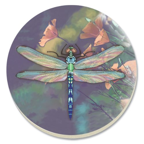 (CounterArt Dragonfly Absorbent Coasters, Set of 4)