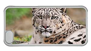Hipster cool iPhone 5C cases Snow Leopard Face PC Transparent for Apple iPhone 5C