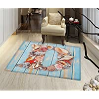 Letter D Non Slip Rugs Nautical Themed Alphabet with Seashells Animal Wooden Background Indoor/Outdoor Area Rug 32x48 Pale Blue Ivory Dark Coral