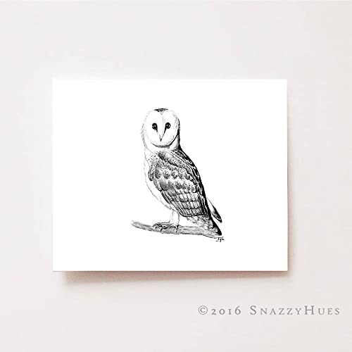 Amazon Com Nursery Wall Art Owl Fine Art Giclee Print Charcoal