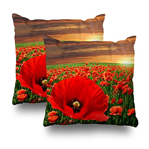 KJONG Poppy Flower Field At Sunset Zippered Pillow Cover,18X18 inch Square Decorative Throw Pillow Case Fashion Style Cushion Covers(Two Sides Print)(Set of 2)