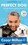 How to Raise the Perfect Dog, Cesar Millan and Melissa Jo Peltier, 0307461297