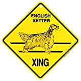 English Setter Xing caution Crossing Sign dog Gift