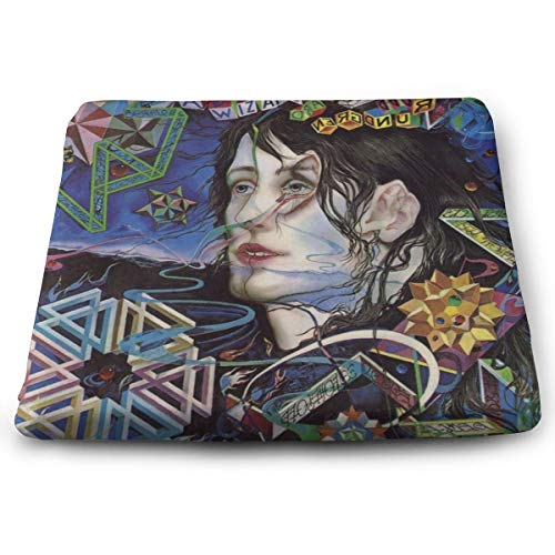 Todd Rundgren A Wizard A True Star Seat Cushion Memory Foam Cushion for Office Chair/Computer Chair/Home, Square Multi-Use Sit Cushion