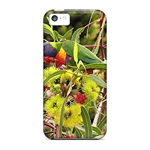 linJUN FENGFashion Tpu Case For ipod touch 5- Lorikeet In Flowering Gum Defender Case Cover