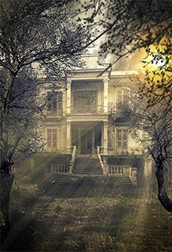 Leyiyi 3x5ft Gothic Halloween Backdrop Abandoned House Medieval Castle Old Church Building Ghost House Sunset Bare Trees Photography Background Scary Costume Carnival Photo Studio Prop Vinyl Banner