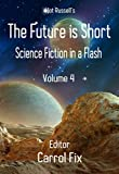 img - for The Future is Short: Science Fiction in a Flash book / textbook / text book