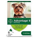 Bayer Advantage II Flea And Lice Treatment For Small Dogs 3 10 Lb