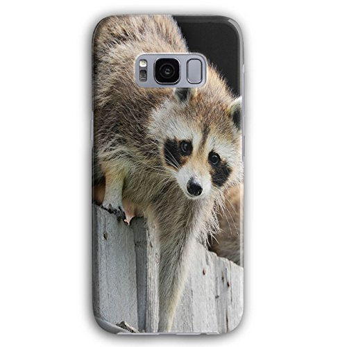 Racoon Photo Wild Animal King Of Thiefs 3D Samsung Galaxy S8 Plus Case | - Picture Racoon Of