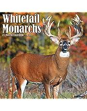 Whitetail Monarch Deer 2022 Wall Calendar