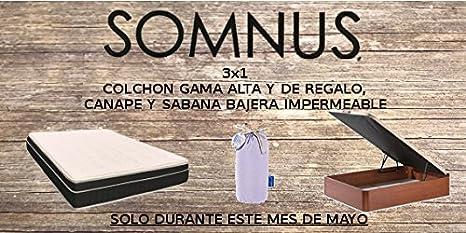 Desconocido 3x1 COLCHON Mod.MILENIUM Regalo CANAPÉ+Sabana Bajera 160x190: Amazon.es: Hogar