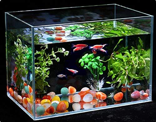 NTS Planta de Piedra de Arena de río Natural, sin jarrón para pecera Bonsai o mudanza de casa, decoración del hogar: Amazon.es: Jardín