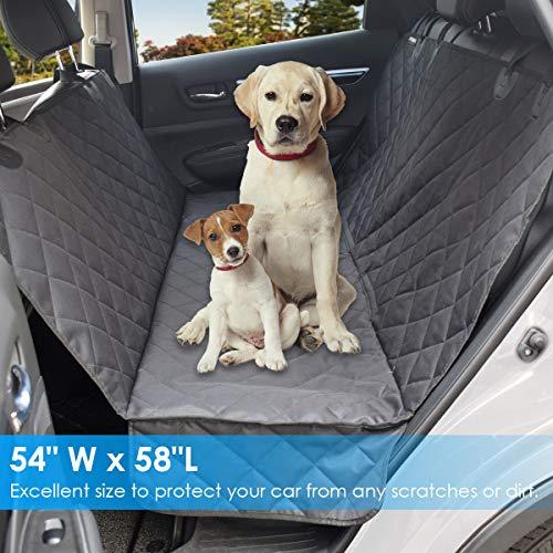 Buy dog car