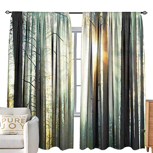 (cobeDecor Extra Wide Curtains Country Fairy Foggy Forest Mist in The Woods Enchanted Wilderness with Sunbeams Image Teal Brown Breathability W120 xL96)
