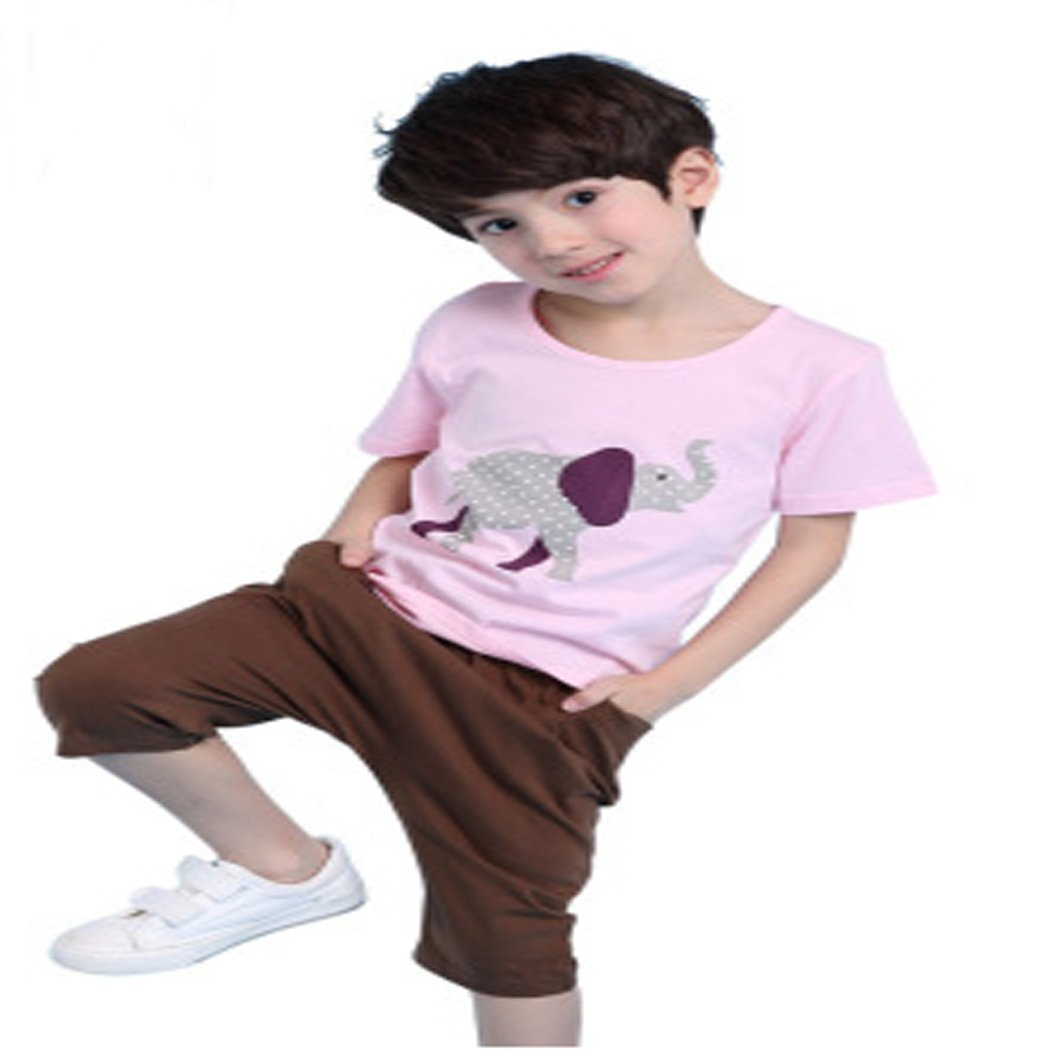 LilyZhang boys summer cotton short sleeved suit 2 pieces