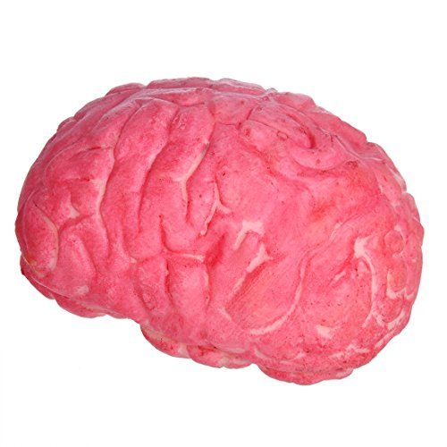 YUFENG House of Terror Horrible Bloody Fake Broken Brain Prank Soft Rubber Spandex Flocculant Halloween Party Props Decoration ()