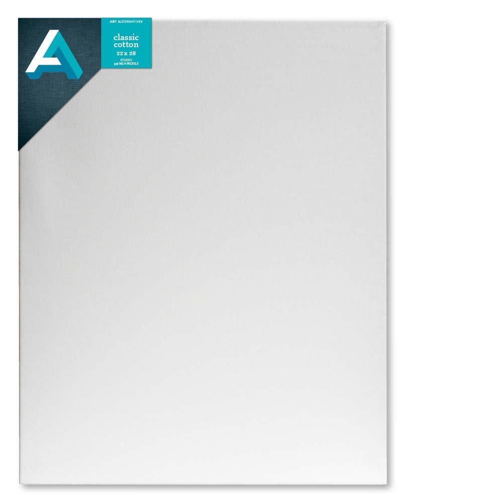 Art Alternatives Studio Stretched Canvas,White,22x28