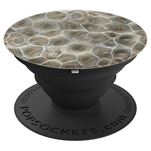 Petoskey Stone Michigan Great Lakes Rock Nature - PopSockets Grip and Stand for Phones and Tablets
