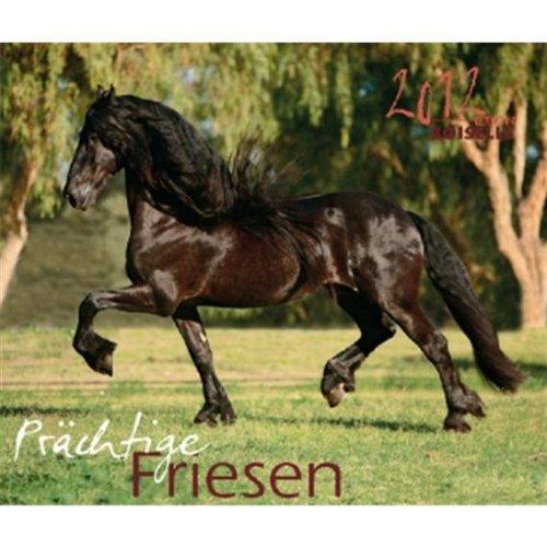 Prächtige Friesen 2012: Die eleganten Schwarzen Pferde Ostfrieslands