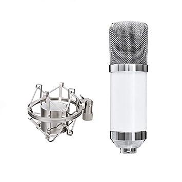 MIKE-ZY Micrófono del Condensador, Duckbill Clásico ...