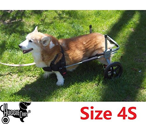 Dog Wheelchair for Dog 3-99 lbs. By Huggiecart. 8 Sizes to Select to Fit Your Dog (4S-Medium Short 40-70 lbs)
