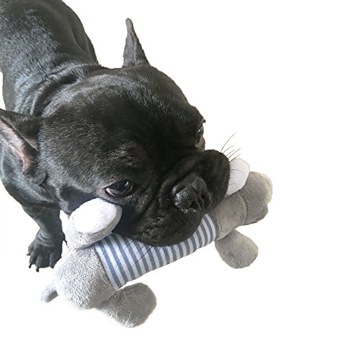WATTA Cotton Stuffing Squeaky Plush Dog Toys and Training Toy for Small or Medium Dog (Skinneeez Rope)