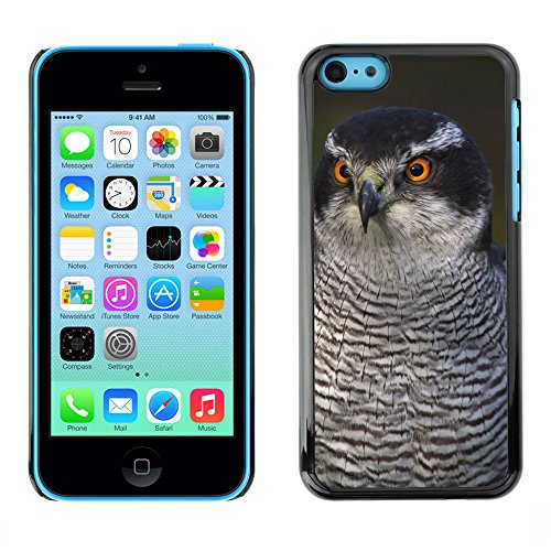 Premio Sottile Slim Cassa Custodia Case Cover Shell // F00004705 oiseau intelligent // Apple iPhone 5C