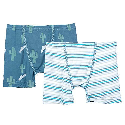 KicKee Pants Boys Boy Boxer Briefs Set Prd-kpbb47-sycds, Dusty sky Cactus & Boy Desert Stripe, 2T-3T