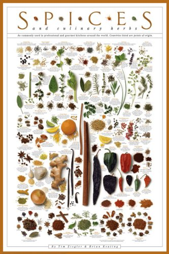 Spices and Culinary Herbs Gourmet Kitchen Cooking Print Poster (Culinary Cooking Spices)