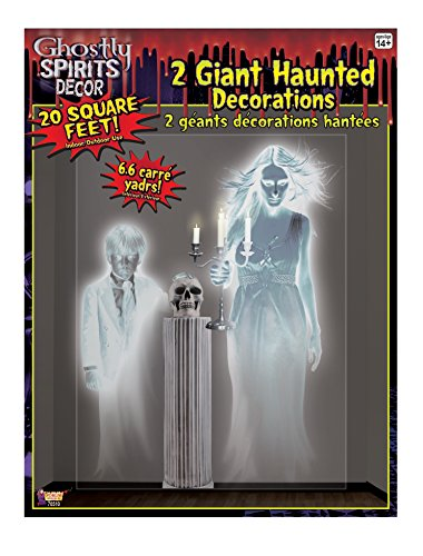 Forum Novelties Ghostly Spirits Indoor/Outdoor Ghost Wall Decoration, 5', Multicolor