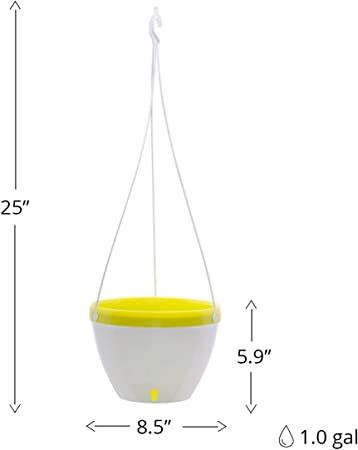 DecoPots self watering Hanging Basket product image